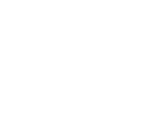 Leading Point logo