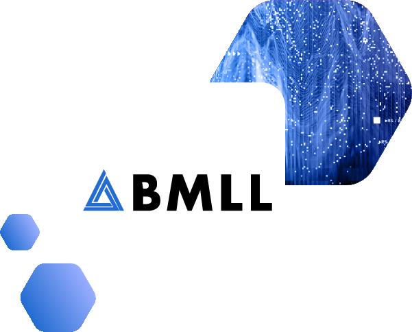 BMLL Partner